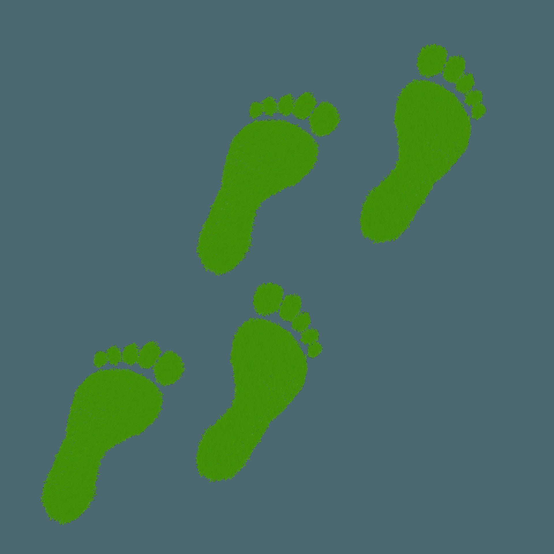 productos y servicios allgrass