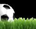 mantenimiento campos de futbol